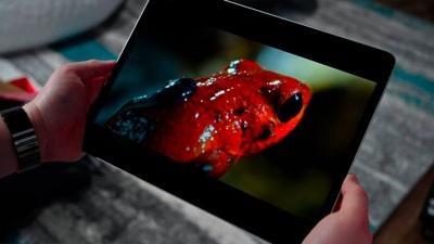 Apple có thể sử dụng màn hình OLED thay thế cho màn hình TFT trên iPad vào năm 2022